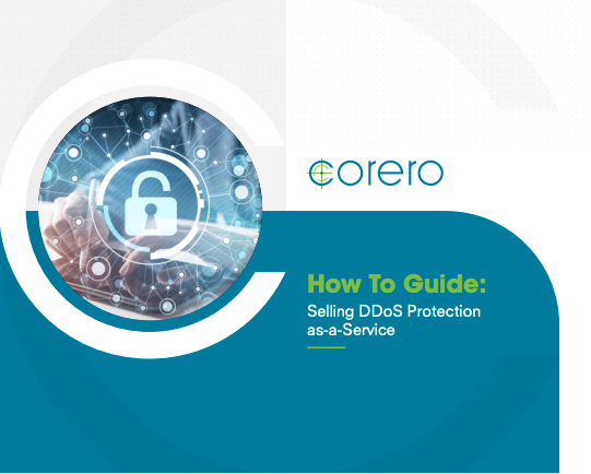 How to Guide - DDoS aaS